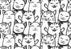 Katzen Au-Pair - außergewöhnliche Jobs