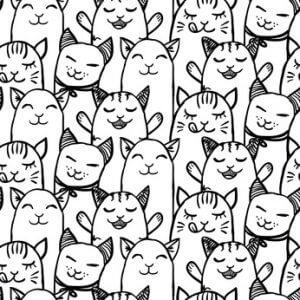 Katzen Au-Pair